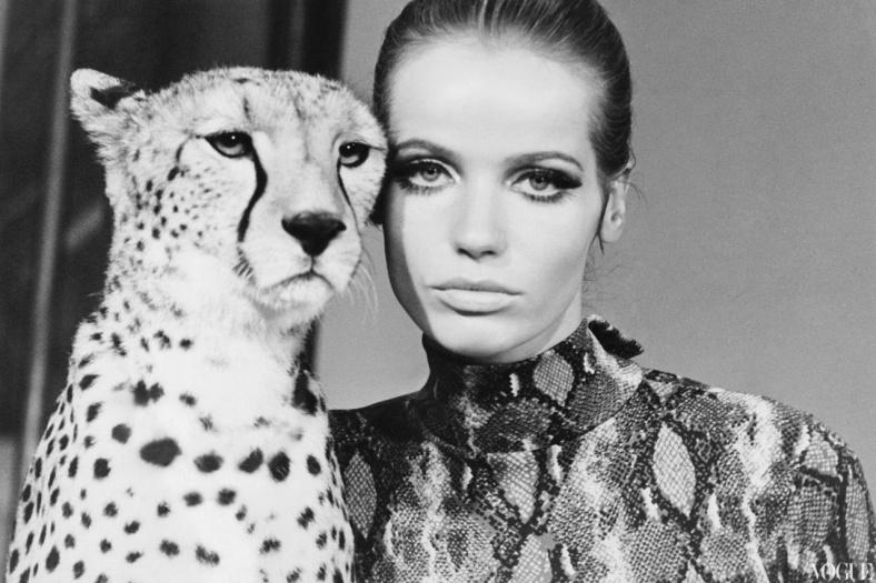 Veruschka_with_leopard _William Klein